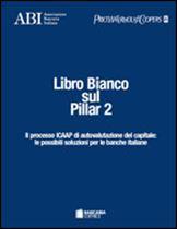Immagine di Libro Bianco sul Pillar 2